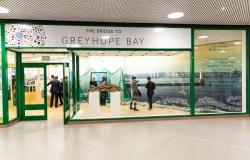 Greyhope Bay pop-up shop